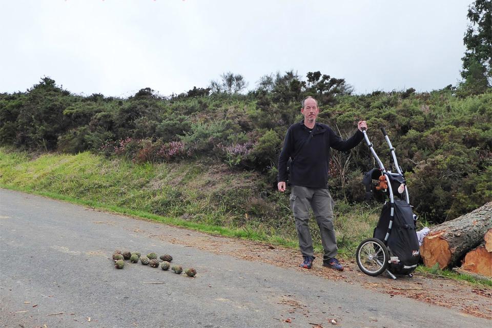 8 Camino-Routen mit dem Wheelie Wanderanhänger-image